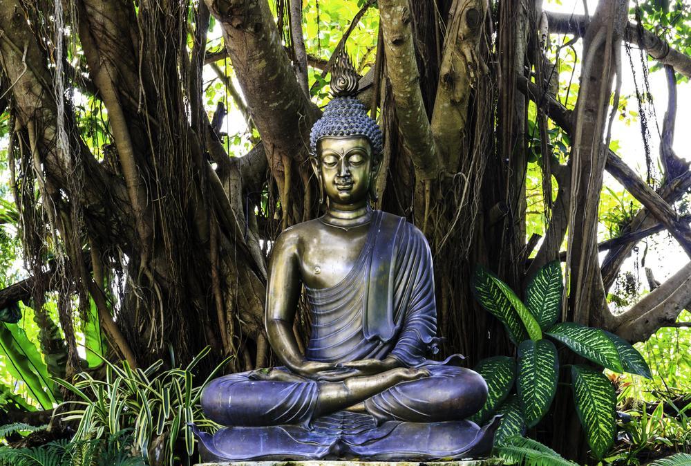 Achat Bouddha Le Guide Boutique En Ligne