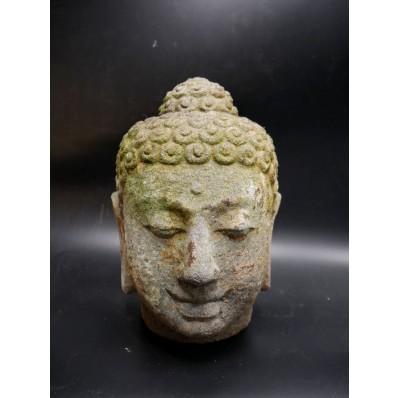 Bouddha bali