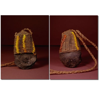 Collier fossile Asmat