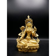 Tara verte Népal