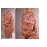 Statue indienne : element de temple indien tete de cheval milieu XXème